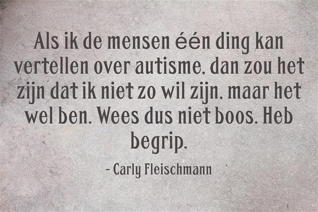 Carly Fleischamann liet haar vader, John Fleischmann, een boek schrijven met haar ideeën, getiteld, Carly's Voice. Ze hebben samen een website.