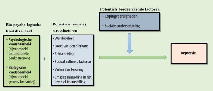 Biopsychosociaal verklaringsmodel voor de oorzaken van depressie