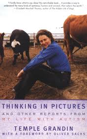 thinking-in-pictures