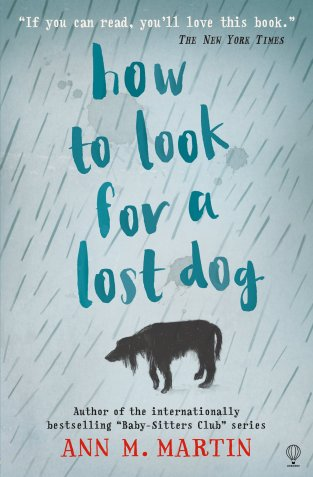 how-to-look-for-a-lotst-dog