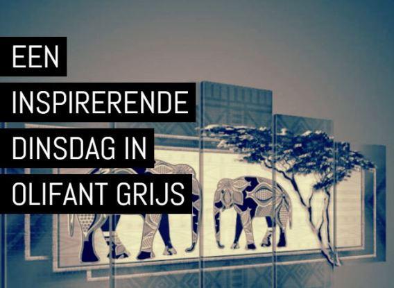 dinsdag-olifant-grijs